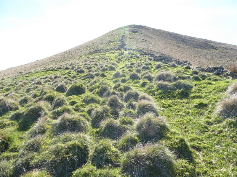 20170325p looking up n ridge of lose hillg website publicscrutiny Image collections