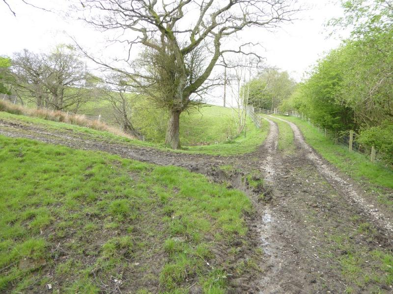 20170429j rough track for n ridge of lose hillg website publicscrutiny Image collections